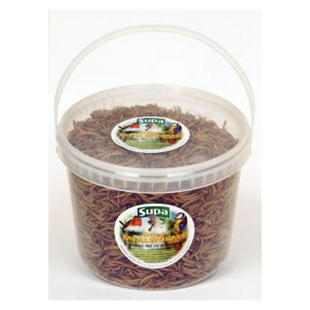 Supa Dried Mealworms 3L