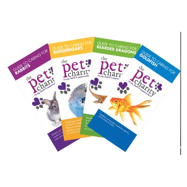 The Pet Charity Guide To Dog Training & Socialisation